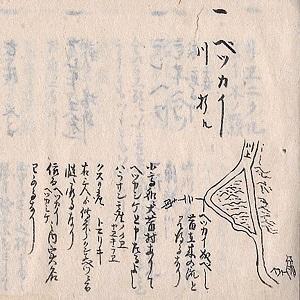 [講演会]★谷本晃久 「蝦夷通詞とアイヌ語地名」