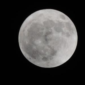 昨夜の満月と今朝の富士