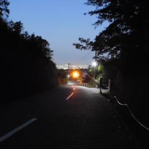 街の明かりと富士