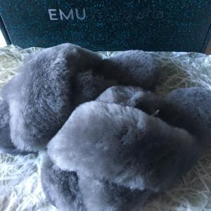 EMUのスリッパ
