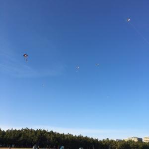 たこ、凧上がれ