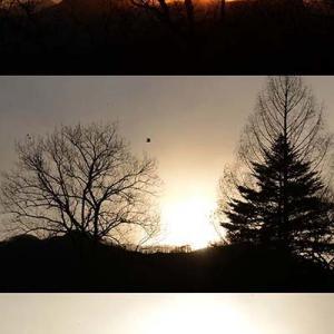 山から昇る日の出の角度で異なる初日の出の色