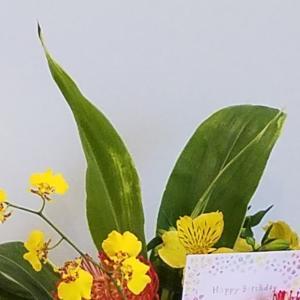 誕生日にもらった花籠