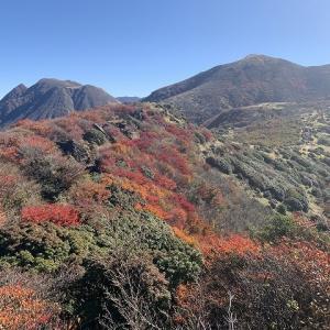 九重連山の紅葉2020 その2