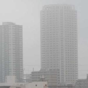 濃霧の予報