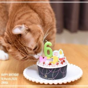 Happy Birthday るったん♡