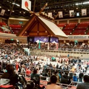 第9回白鵬杯〜世界少年相撲大会に参加