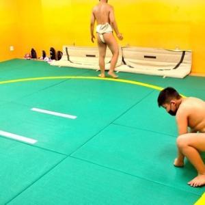 相撲の稽古を再開しました!