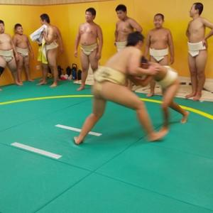いざ!わんぱく相撲女子全国大会へ