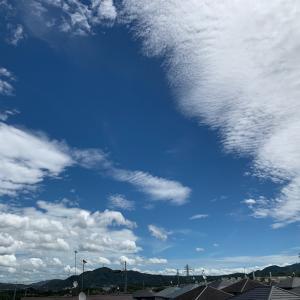 空の青さに目がいく…夏