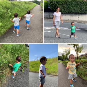 孫達のお陰で散歩が日課に…
