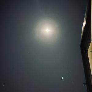 月に願いを…なんて普段は言わない