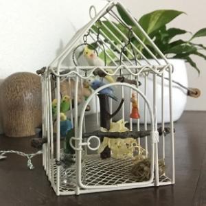 ★鳥かごにいっぱいの小鳥