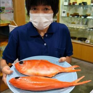 金目鯛1匹、3万3千円 食べられないけど…展示販売