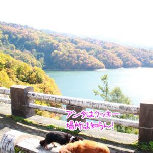 有峰森林文化村の紅葉①~富山県~