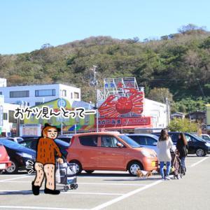 プチワンだふる日本海②~寺泊魚の市場通り(魚のアメ横)編~
