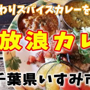 こだわりスパイスカレーを堪能【放浪カレー】千葉県いすみ市