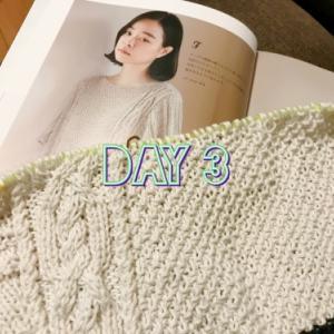 【編んでいるもの】プルオーバー【Day3】