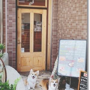 兵庫・wan stop cafe さん♪