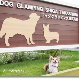 滋賀・ドッググランピング滋賀高島♪
