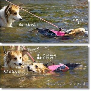 川遊びとBBQ♪