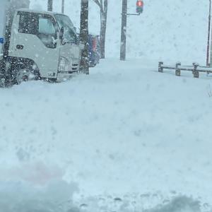 雪、凄いよー
