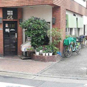喫茶店 じん【モーニングランチセット、チキンカレー♪】
