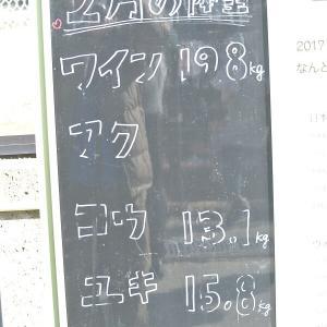 お久しぶりの五月山動物園2020/11/3