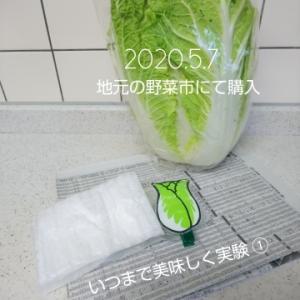 2020.5.7 ベジバッジッケン 白菜編 ①