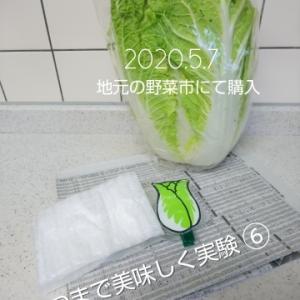 2020.6.16 ベジバジッケン⑥ 白菜編