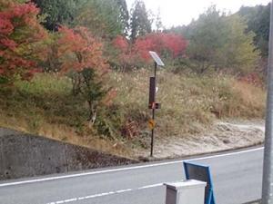 幻のイワナ、キリクチに会いに弥山川双門コースへ