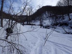 上越BC遠征1:守門大岳で重雪滑走