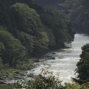 梅雨明けと多摩川