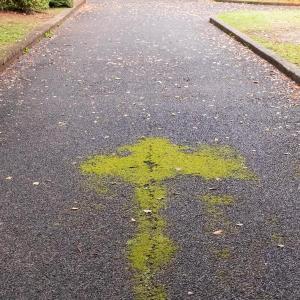 公園の路面に描かれた矢印