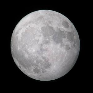 月も十六夜う林叟院