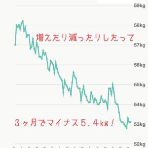記録の大切さに気づいて3ヶ月でマイナス5.4kg!【モデル体型ダイエット塾】