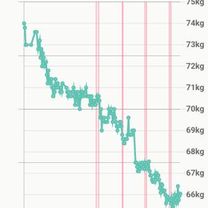 食事を変えて半年で8.5キロ減、ウエスト10センチ減【モデル体型ダイエット塾】