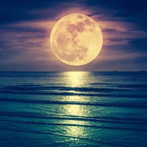 【今週末開催!】7/24(土)みずがめ座満月瞑想会