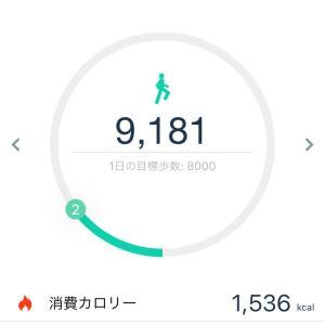 週末の歩数