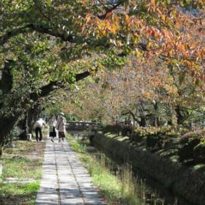 大豊神社~永観堂~南禅寺の紅葉めぐり
