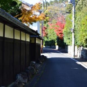京都洛北-上賀茂神社の紅葉