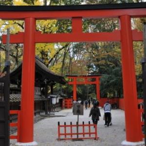 下鴨神社と河合神社の紅葉