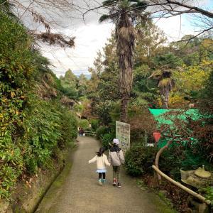コロナ急増の大阪✦✧家族で行った場所⑅︎◡̈︎*
