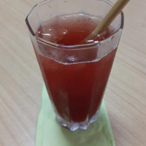 プレミアムカシスジュースを飲みながら 年齢域(クロノクレーター)についてレクチャーして来たよ