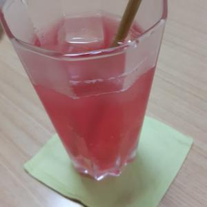 赤しそジュースを飲みながら占い師養成講座☆西洋占星術コースを開講して来たよ(^-^)