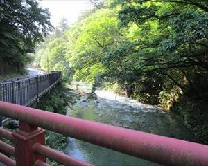 四万温泉にて 朝のお散歩をして来たよ(^-^)
