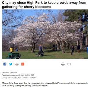 トロントの昼 4月5日  郊外の市町村の対応もまちまち!?