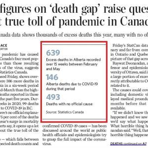 トロントの朝 7月25日  コロナによる死者数データが正確ではない!?