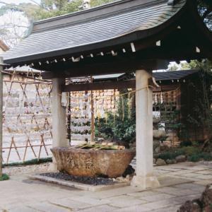 菊田神社 (フィルム写真)
