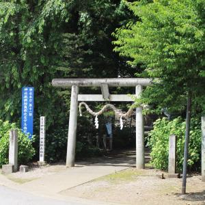 神社参拝(村社星宮神社)